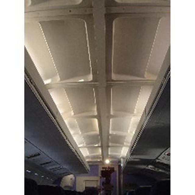 Interior Ceiling Panels