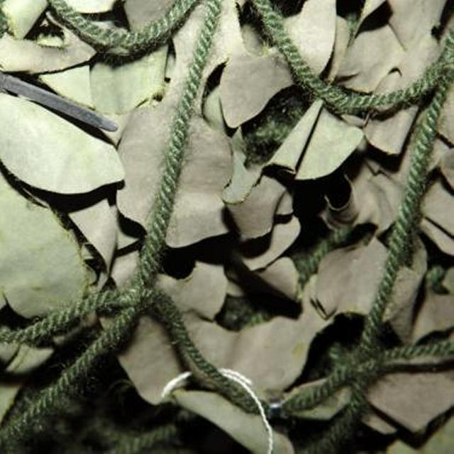 Camoflage Netting