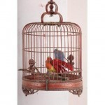 Chinese Birdcage 350X210Mm