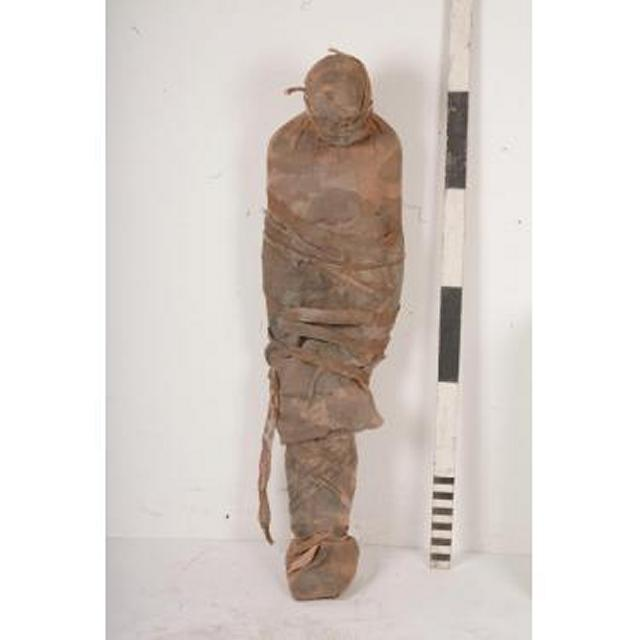 Mummy Full Sized 1650