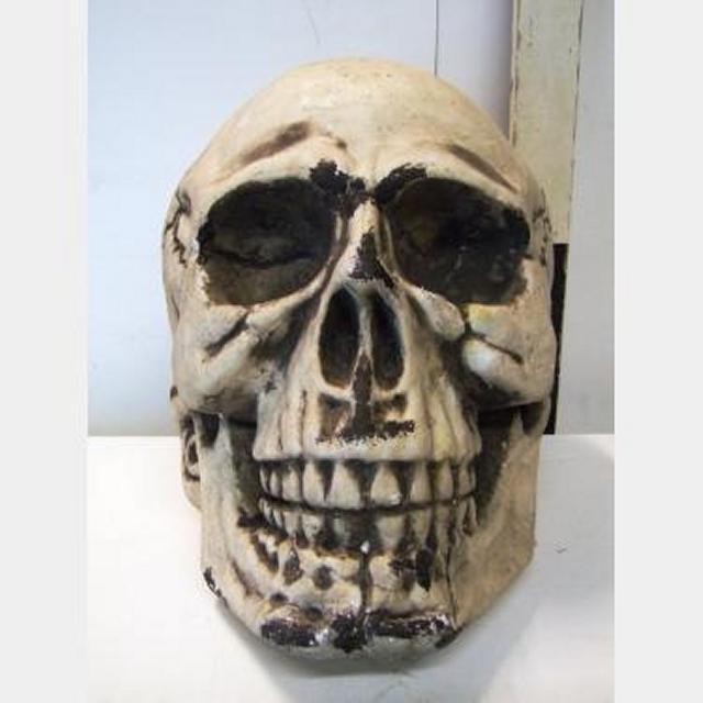 Large Poly Skull X2 360X340X340