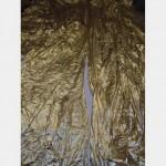6100 Without Fullness X 6100Mm Drop Pair Gold Foil Scht