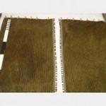1200 Wof X 2700Mm Green Striped Velvet Side Fringe Pair Clean Gold Clips