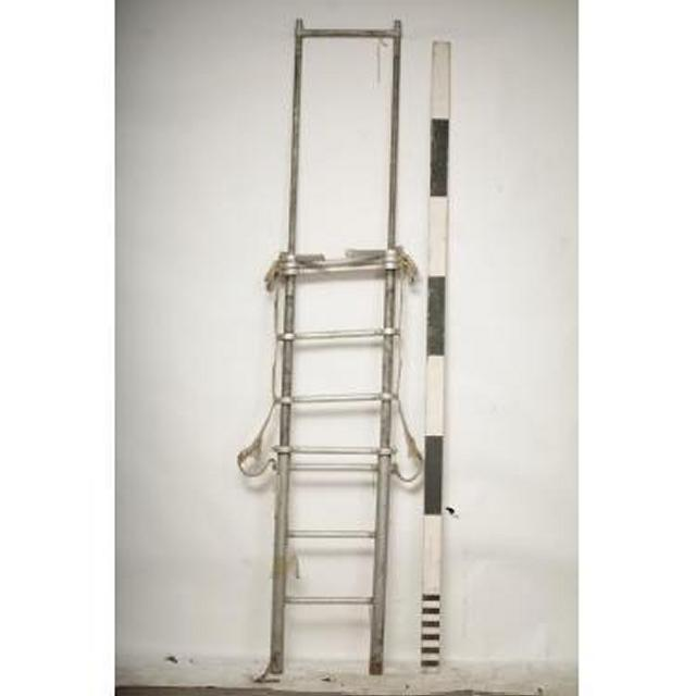 Extnaded Extendable Ladder 2750X410
