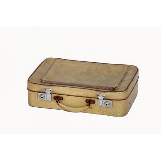 Suitcase 105X400X275
