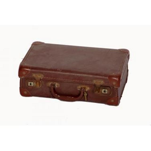 Suitcase 120X350X225