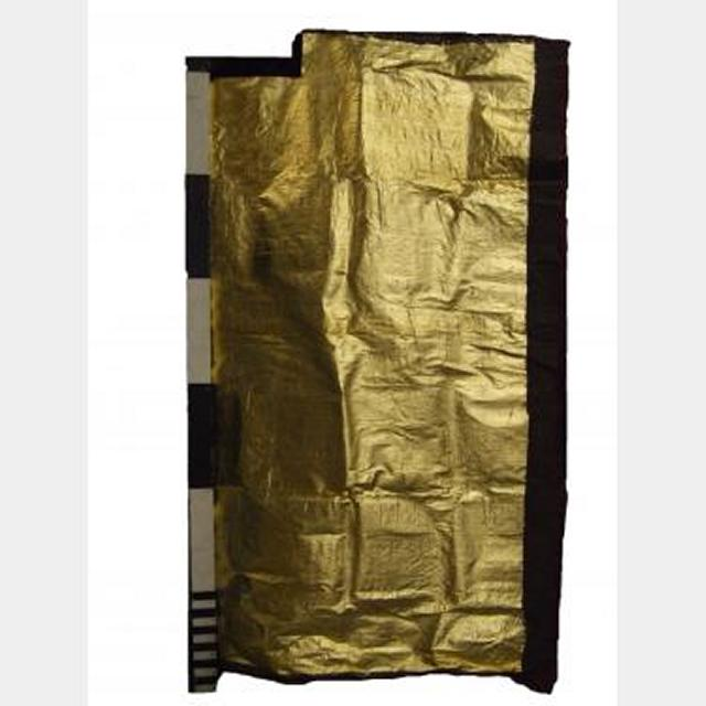 Silk Fabric With Gold Panel 1800X1200
