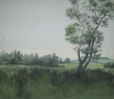 Backdrop 023 Rural Counrtyside 16'X12'