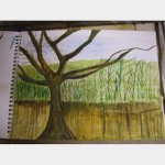 Watercolours In Sketch Book Various