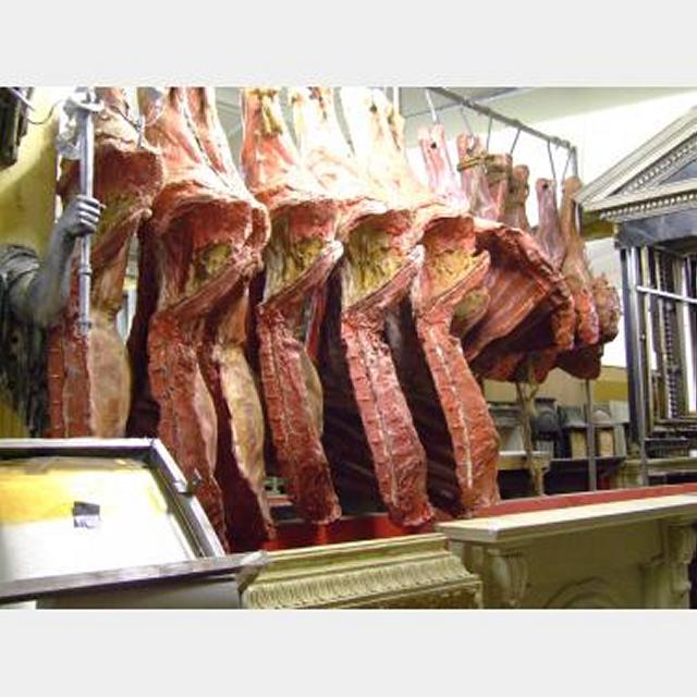 Selection Of Mock Meat