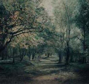 Backdrop 115 Summer Autumn Woodland Path 30'X15'
