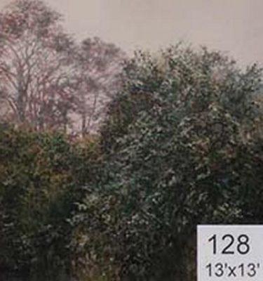 Backdrop 128 Woodland  Spring Summer Trees 13'X13'