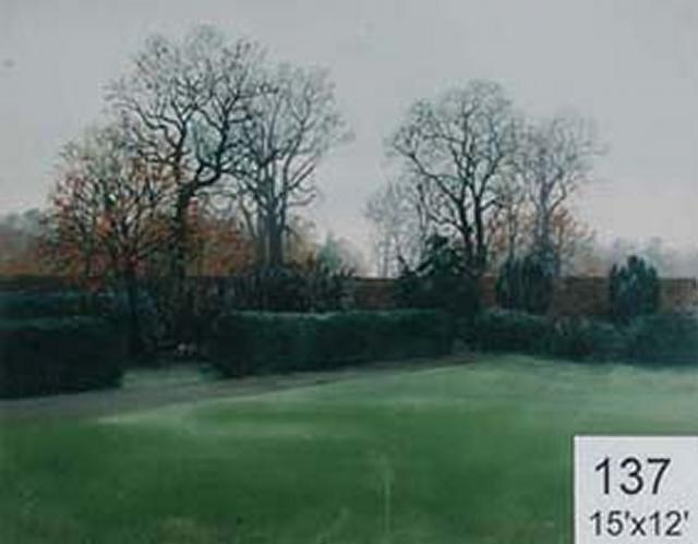 Backdrop 137 Suburban Autumn Garden 15'X12'