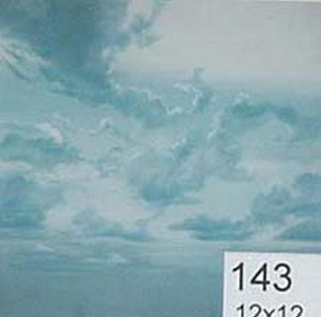 Backdrop 143 Cloudy Sky 12'X12'