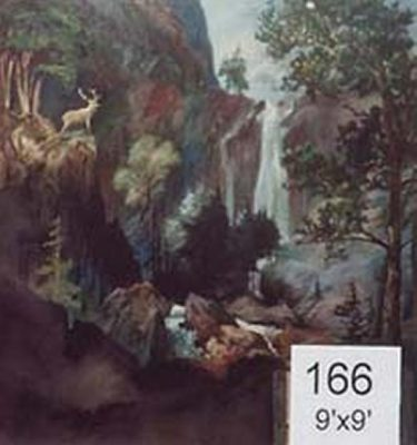 Backdrop 166 Mountain View With Waterfall 9'X9'