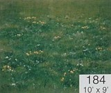 Backdrop 184 Green Meadow 10'X9'