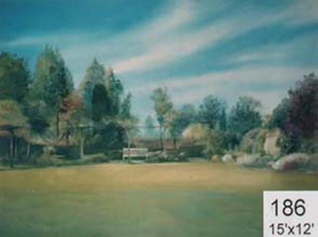 Backdrop 186 Suburban Summer Garden 15'X12'