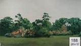 Backdrop 188 Suburban Summer Garden 28'X15'