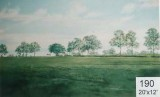Backdrop 190 Rural Parkland 20'X12'