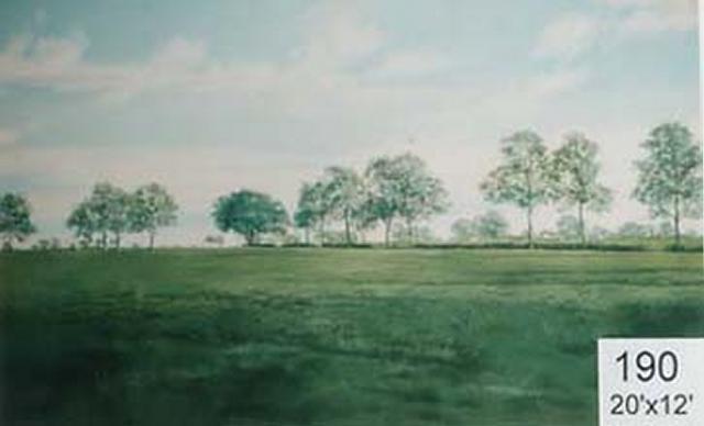 Backdrop 190 Rural Parkland 20'X12'