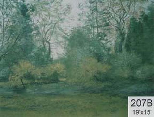 Backdrop 207B Rural Park Woodland 19'X15'