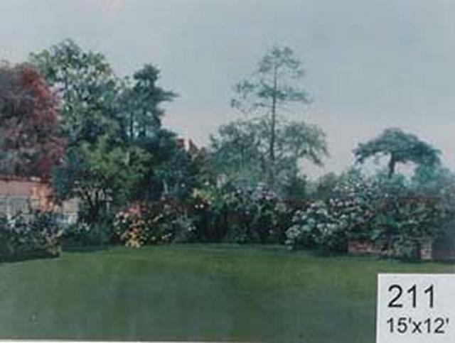 Backdrop 211 Suburban Summer Garden 15'X12' Currently Unavailable