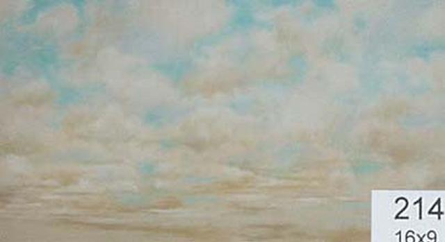 Backdrop 214 Cream Clouds 16'X9'