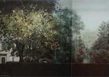 Backdrop 218A Tree Lined City Gardens 30'X15'