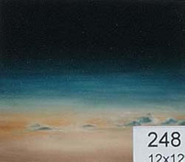 Backdrop 248 Sky With Stars At Altitude 12'X12'