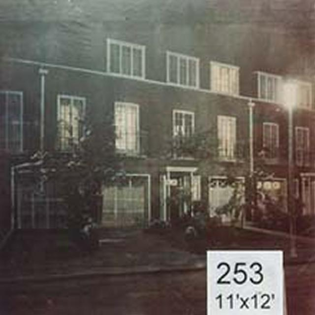 Backdrop 253 Suburban Terrace 11'X12'