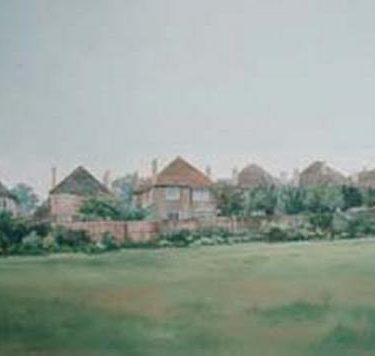 Backdrop 254 Suburban Houses Village Green 21'X12'