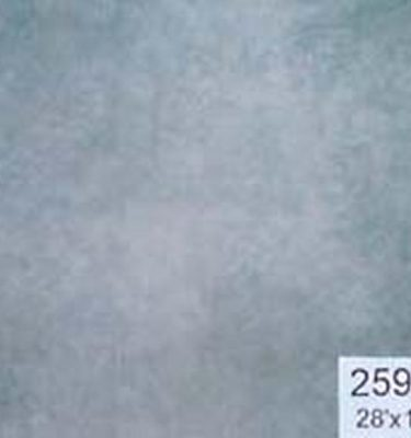 Backdrop 259B Grey 28'X18'