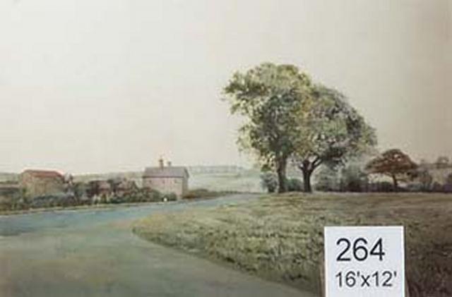 Backdrop 264 Rural Farmhouse 16'X12'