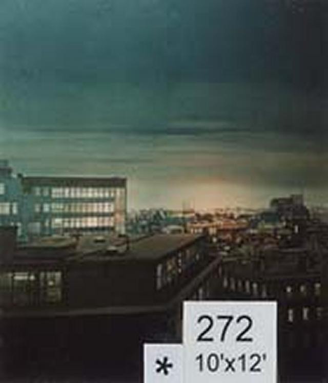 Backdrop 272 High Level Night City View 10'X12'