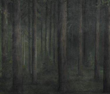 Backdrop 275 Woodland Tree Trunks 30'X15'