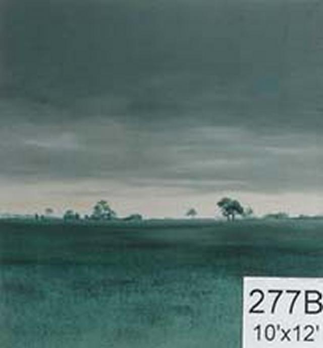 Backdrop 277B Rural Landscape At Dusk Dawn 10'X12'