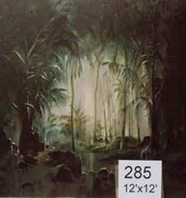 Backdrop 285 Jungle Clearing 12'X12'
