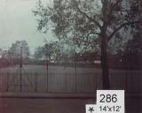 Backdrop 286 City Park View 14'X12'