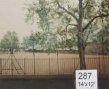 Backdrop 287 Suburban Garden Park View 14'X12'