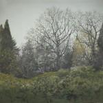 Backdrop 288 Autumn Spring Woodland 12'X12'