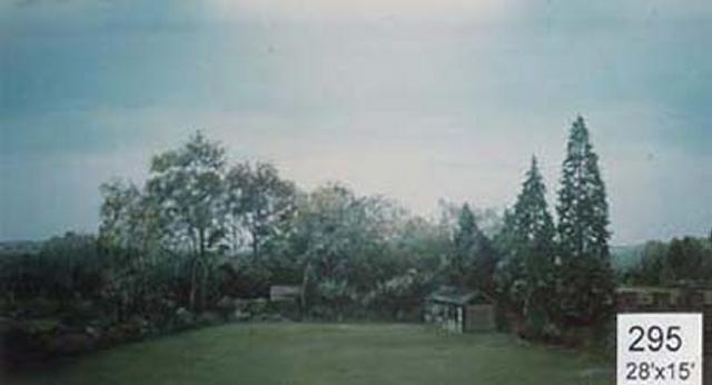 Backdrop 295 Suburban Summer Garden High View 28'X15'