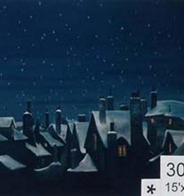 Backdrop 303 Snow Covered Roof Tops At Night 15'X12'
