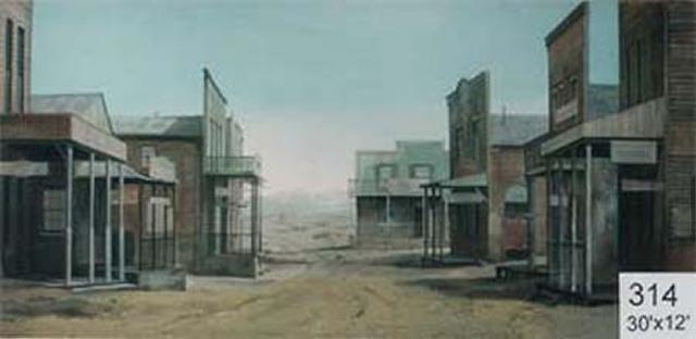 Backdrop 314 Western Street 30'X12'