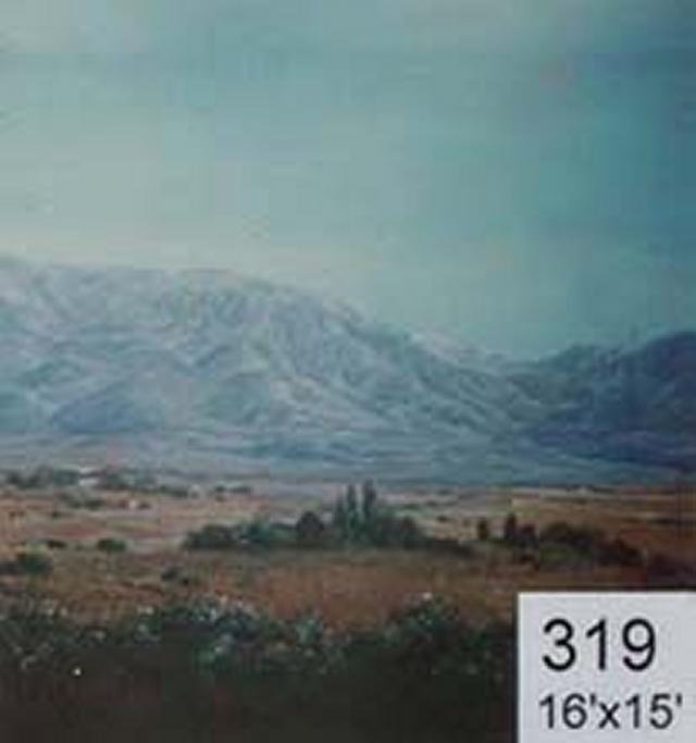 Backdrop 319 Mountain Landscape 16'X15'