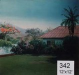 Backdrop 342 Tropical Bungalow 12'X12'