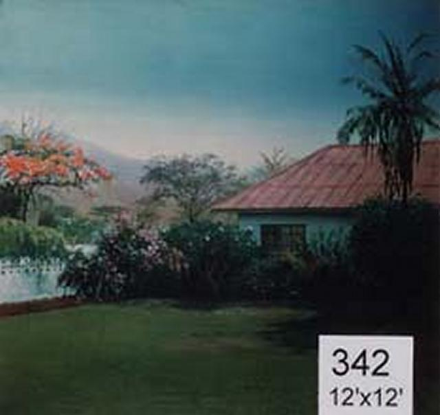 Backdrop 342 Tropical Bungalow 12'X12'