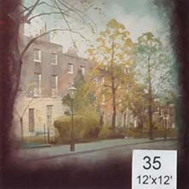 Backdrop 35 Parisian Street 12'X12'