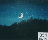 Backdrop 354 Starry Night Sky, Crescent Moon Over Treeline 16'X15'