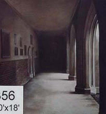 Backdrop 356 Passage Cloisters 10'X18'