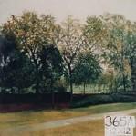 Backdrop 365A Rural Garden Park 12'X12'